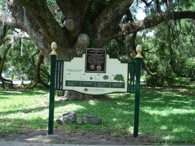 city-of-orlando-tree-plaque-close